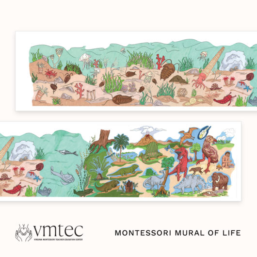 The Montessori Mural of Life from Michael Dorer at VMTEC